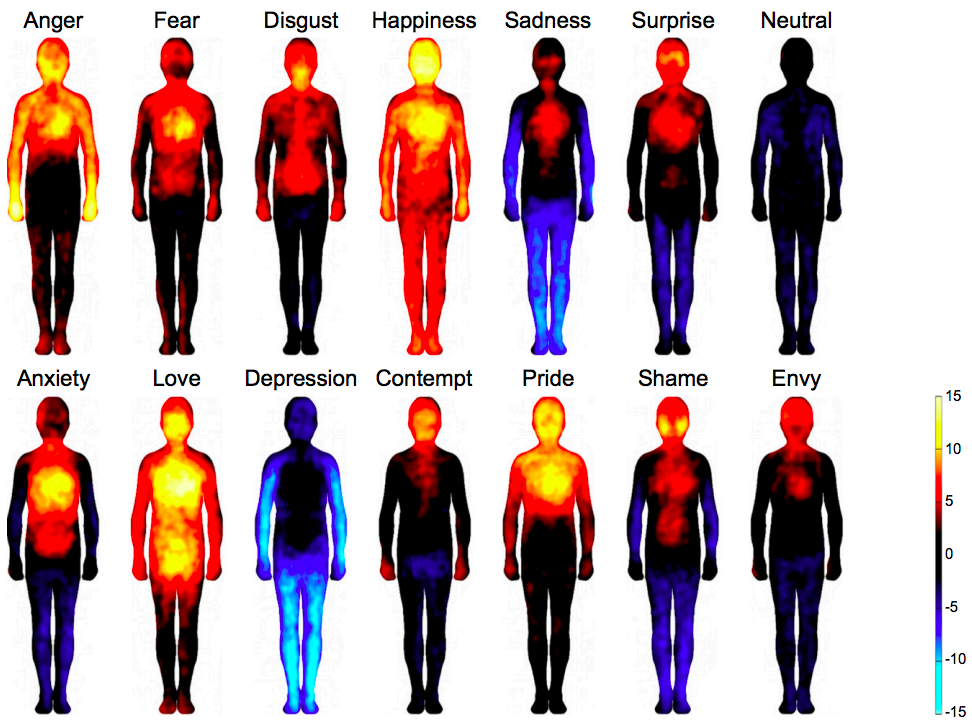 Bodily maps of emotions collected with the emBODY tool